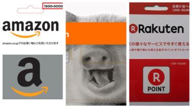 【8/31終了】楽天バリアブルカードをエディオンで6gramリアルカードを使って購入する方法